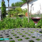 Niagara Falls Wineries Wine Tasting Guide Tours & Transportation Review